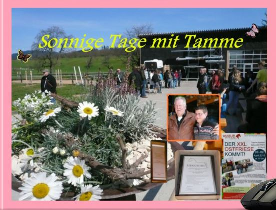 tamme9